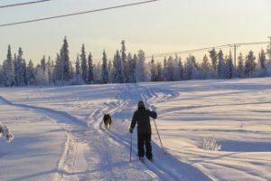 Lapland Activities